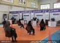آغاز بکار هشتمین مرکز تجمیعی واکسیناسیون یزد در دانشگاه علم و هنر